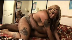 Chubby black slut sits on his big black boner and jiggles and wiggles