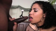 Two busty ebony chicks blow him and take turns getting it up the ass