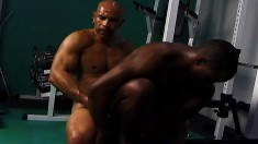 Two attractive black body builders getting down and dirty in the gym