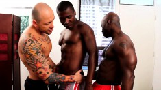 Tattooed white stud plays out his gay fantasies with two black hunks