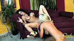 Lesbian babes in the living room eat and toy their wet pussies