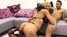 A black shaft drills her cunt from behind while the Oriental cutie blows another