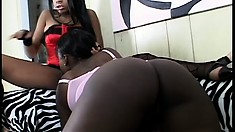 Big bootyed black dykes give each other a lick on their couch
