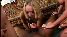 Insatiable black fucker gets it on with three white cocksuckers