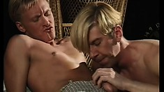 Tempestuous gay boy is having sensitive oral and anal sex with tender playmate