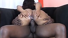 Buxom ebony girl with a big booty takes a huge black stick in her twat